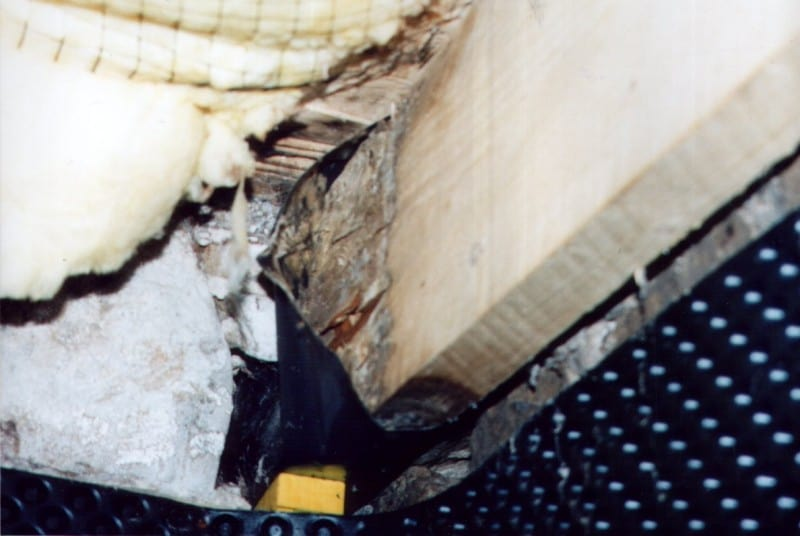 Dry Rot Remedial works gone wrong!
